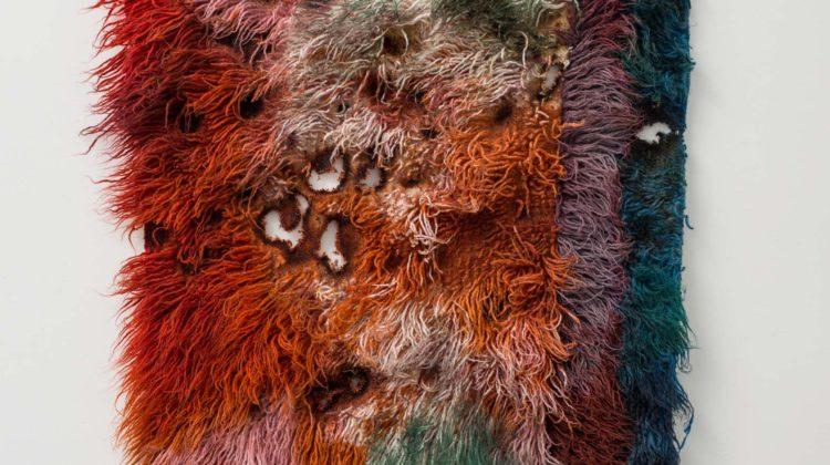 Anna Betbeze Beasts 2015 Lana, cenere, coloranti acidi 122 x 83 cm
