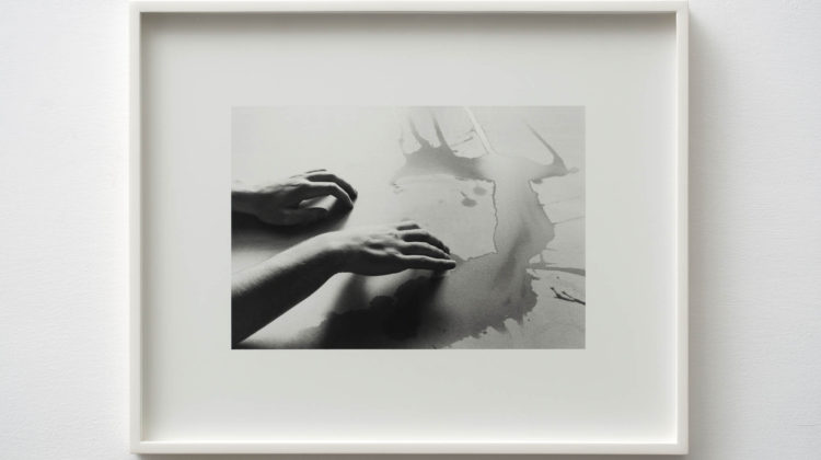 Jonathan VanDyke -  Scent -  2014 -  Gelatin silver print 20 x 24 inches / 51 x 61 cm Edition of 3