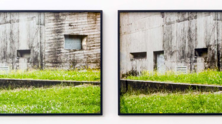 Benjamin Tiven - Divided Mimicry/War Architecture - 2014 Two Archival Inkjet Prints 61 x 86 cm each
