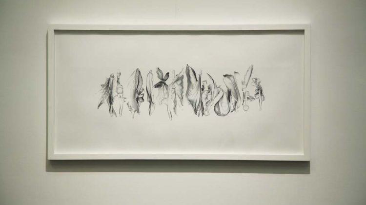 Carla Mattii - Type -  2008 - ink jet on paper cm 50x100