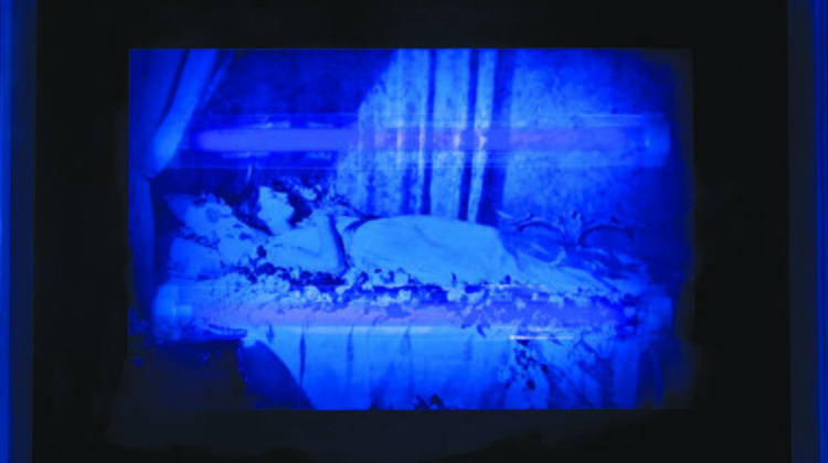 Mat Collishaw - Shrinking Violet I - 2008 - Ultraviolet sensitive ink, acrylic, steel, u.v. lights and fittings - 47,5 x 38 x 11 cm Ed. of 3 + AP