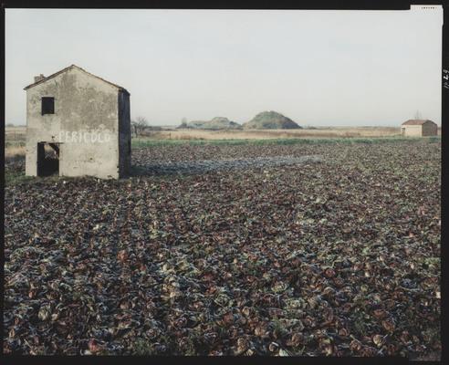 Guido Guidi, Chioggia, via Romea, 1987