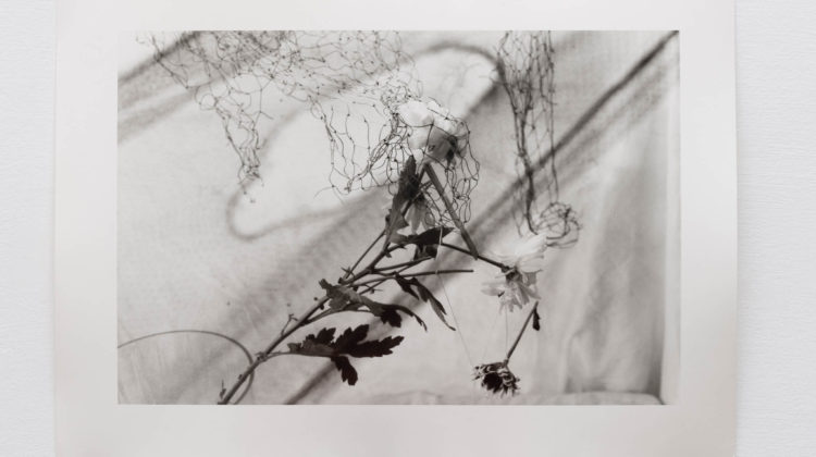 Jonathan VanDyke, Study for a Shadow, 2019, gelatin silver print on fiber paper, edition of 4 + 1 AP, 27 x 35 cm